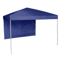 World Famous Sports 10' x 10' Straight-Leg Canopy with Wall and Weight Bags
