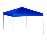 World Famous Sports 10' x 10' Straight-Leg Canopy