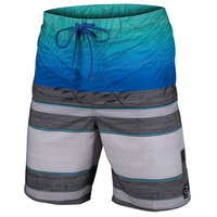 Laguna Men's Faded Palm Boardshorts