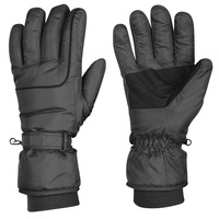 Polar Extreme Men's Insulated Gloves