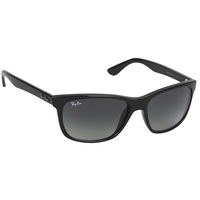 Ray-Ban® RB4181 Sunglasses